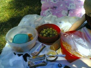 Park picnic