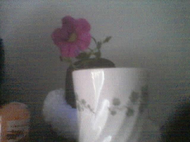 Saved flower